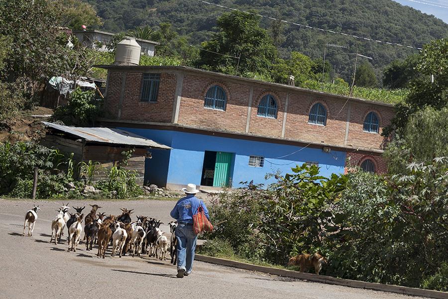 photos-mitla-oaxaca-mexico-3